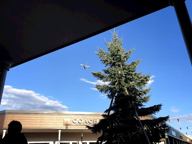 レラの上を飛んでいる飛行機